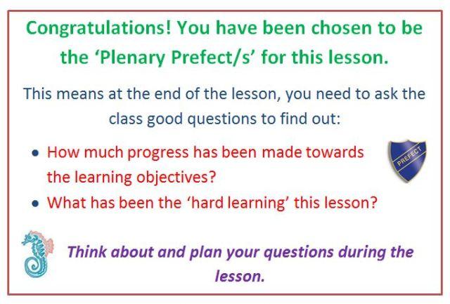 plenary prefect